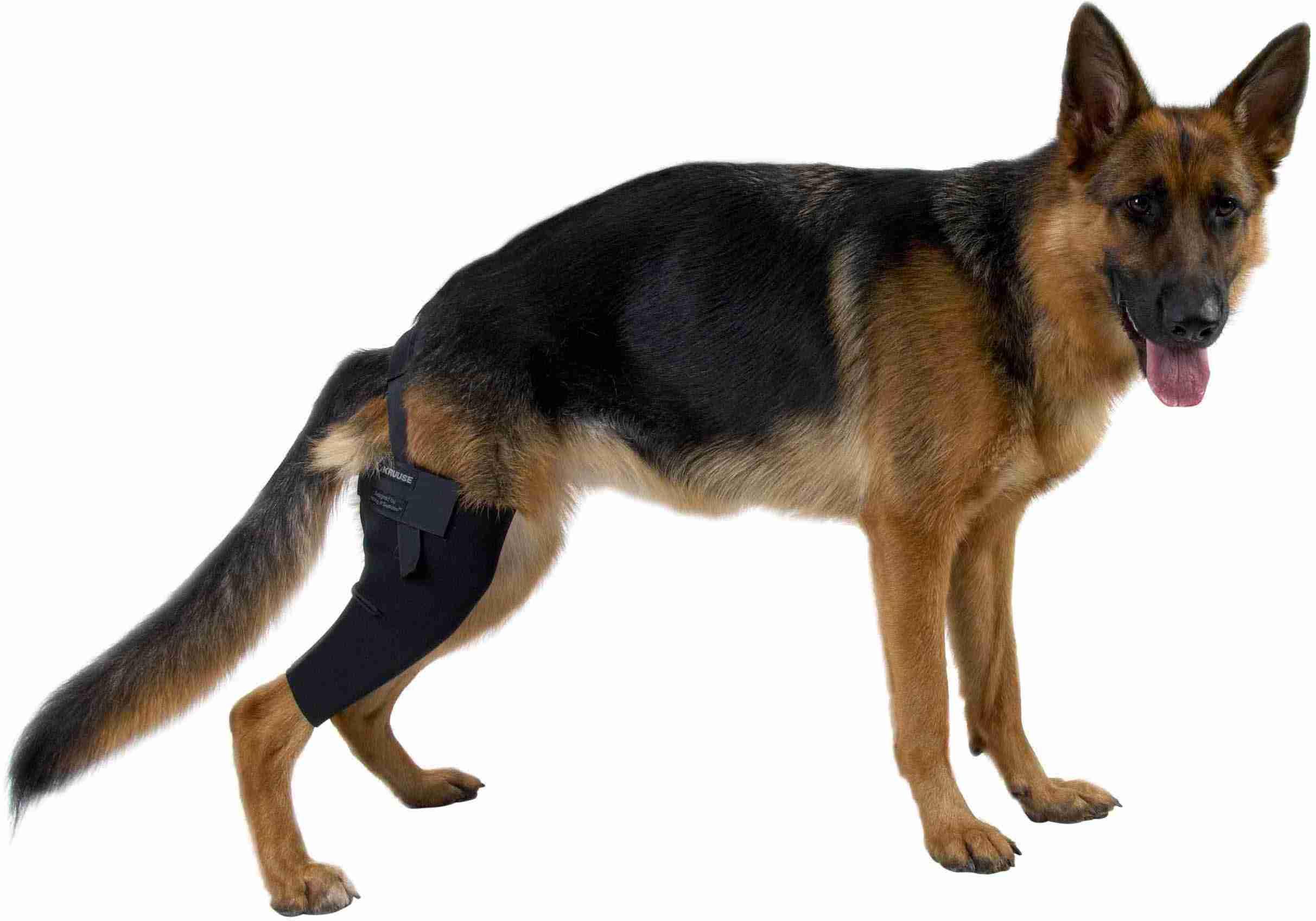 Kruuse Rehab протектор на правое колено XL, 279858