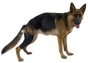 Kruuse Rehab протектор на правое колено XXL, 279886