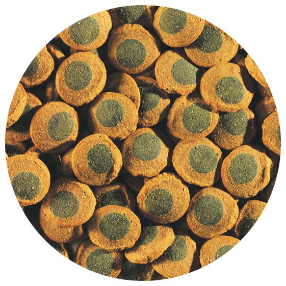 Tetra (корма) ВИА Корм для крупных травоядных донных рыб, пластинки Tetra Pleco Spirulina Wafers 193840, 1,895 кг