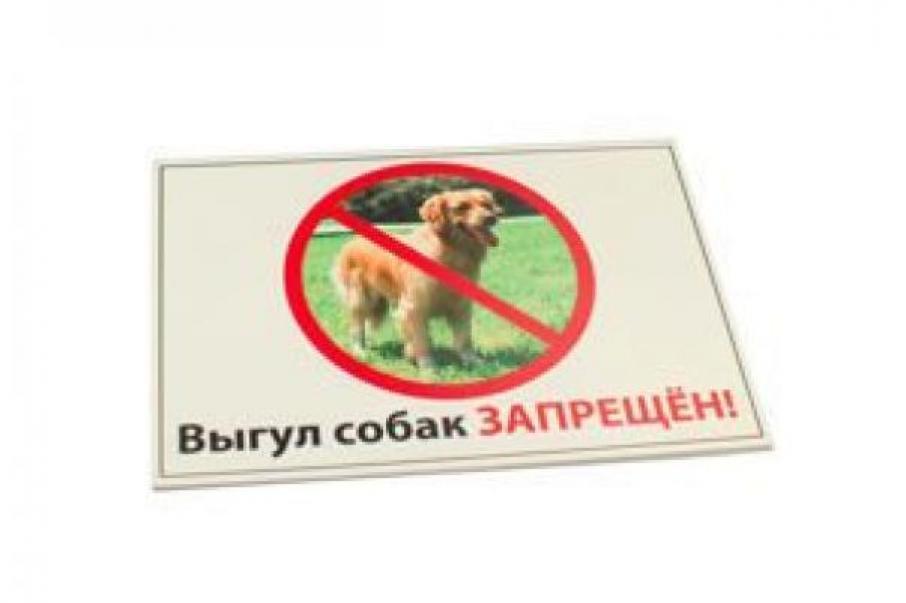 Табличка Выгул собак запрещен! формат А4, RP0040