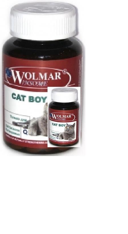 *Волмар Winsome 631 Cat Boy Мультивитаминный комплекс д/котов 180таб, 82727, 3100100378