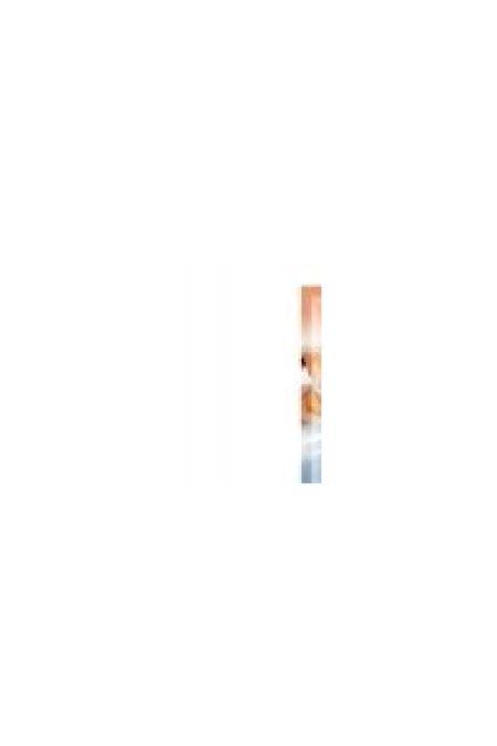 [94.132.С3743]  STUZZY FRIENDS палочка д/собак 12г лосось  (уп-50шт), 94.132.С3743