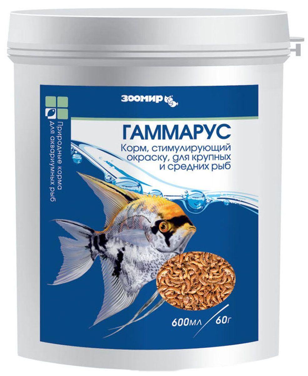 ЗООМИР Гаммарус для рыб, рептилий, земноводных, птиц, банка 600мл 461, 0,060 кг