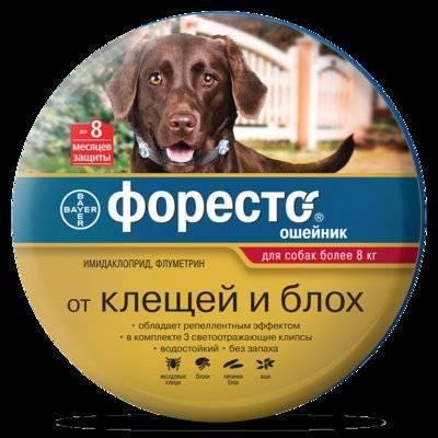 Bayer (Elanco) Ошейник Форесто от клещей,блох,вшей для собак более 8кг, 70см - 37283, 0,132 кг