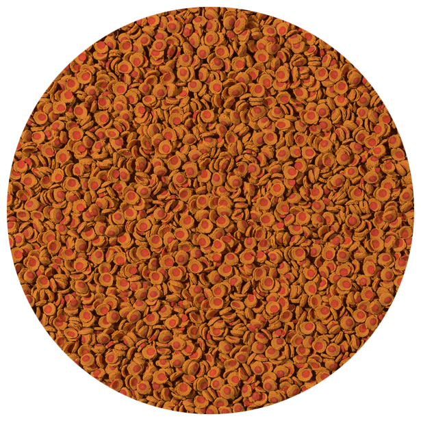 Tetra (корма) ВИА Корм для плекостомусов и коридорасов, пластинки Tetra Cory Shrimp Wafers 2574290, 0,140 кг