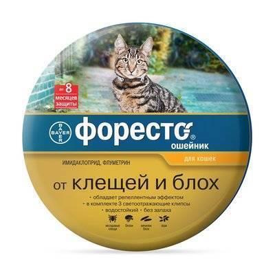 Bayer (Elanco) Ошейник Форесто для кошек от клещей, блох и вшей, 38см (41112), 0,098 кг, 3700100553