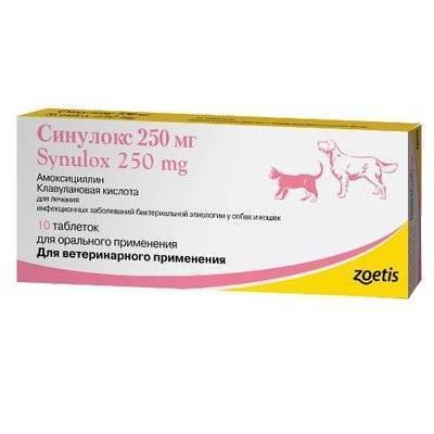 Zoetis Синулокс 250 мг, противоинфекционные таблетки для взрослых собак средних пород 10 таблеток, 1100100719