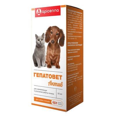 Apicenna Гепатовет Актив суспензия для кошек и собак, лечение заболеваний печени 50 мл