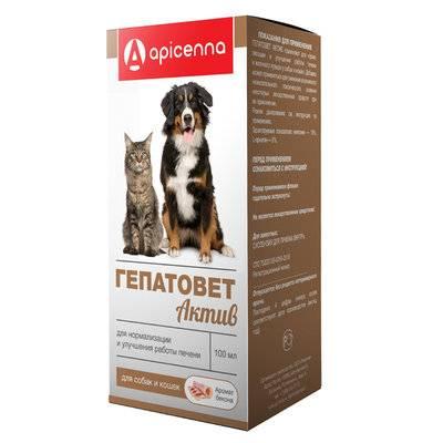 Apicenna Гепатовет Актив суспензия для кошек и собак, лечение заболеваний печени 100 мл