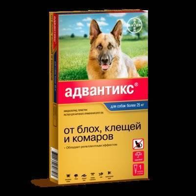 Bayer Адвантикс капли для щенков и собак более 25 кг, от клещей, блох и комаров 1 пипетка