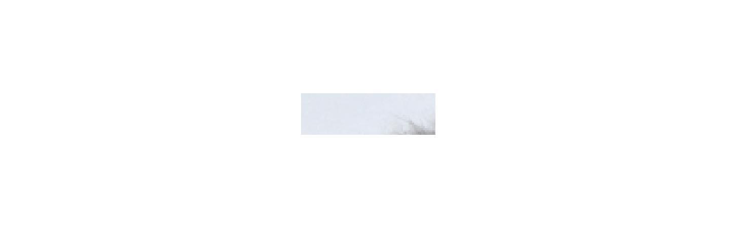 **Beeztees 425430 Набор игрушек д/кошек Мышь с меховым хвостом 6см (блистер), 25882