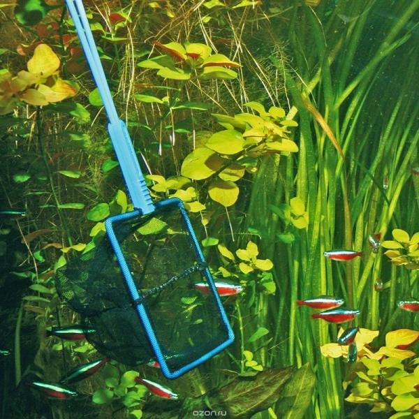 JBL Fish Net PREMIUM coarse - Сачок премиум-класса с крупной сеткой черного цвета, 50,5х20 см