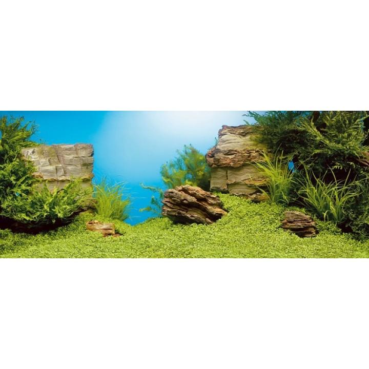 Фон-пленка Juwel Poster1 камни/растительный  60х30см (86250)