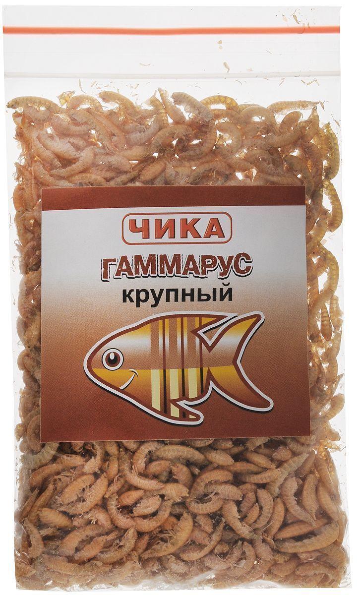 Гаммарус Крупный Чика 85мл 150