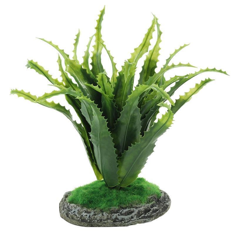 REP19002 Террариумное растение Алоэ 20см