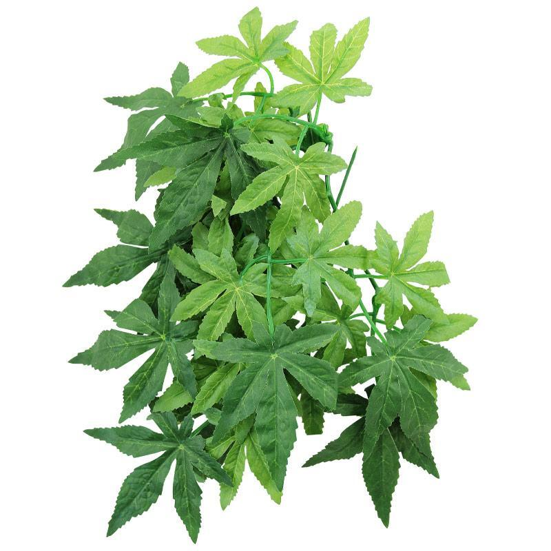 TP003-12 Растение для террариума Абутилон 30см