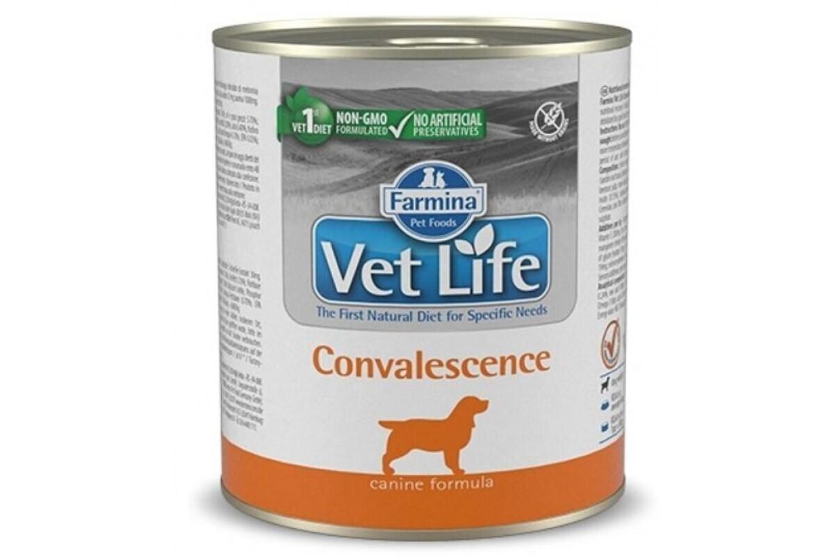 Farmina влажный корм для взрослых собак, восстановление 300 гр