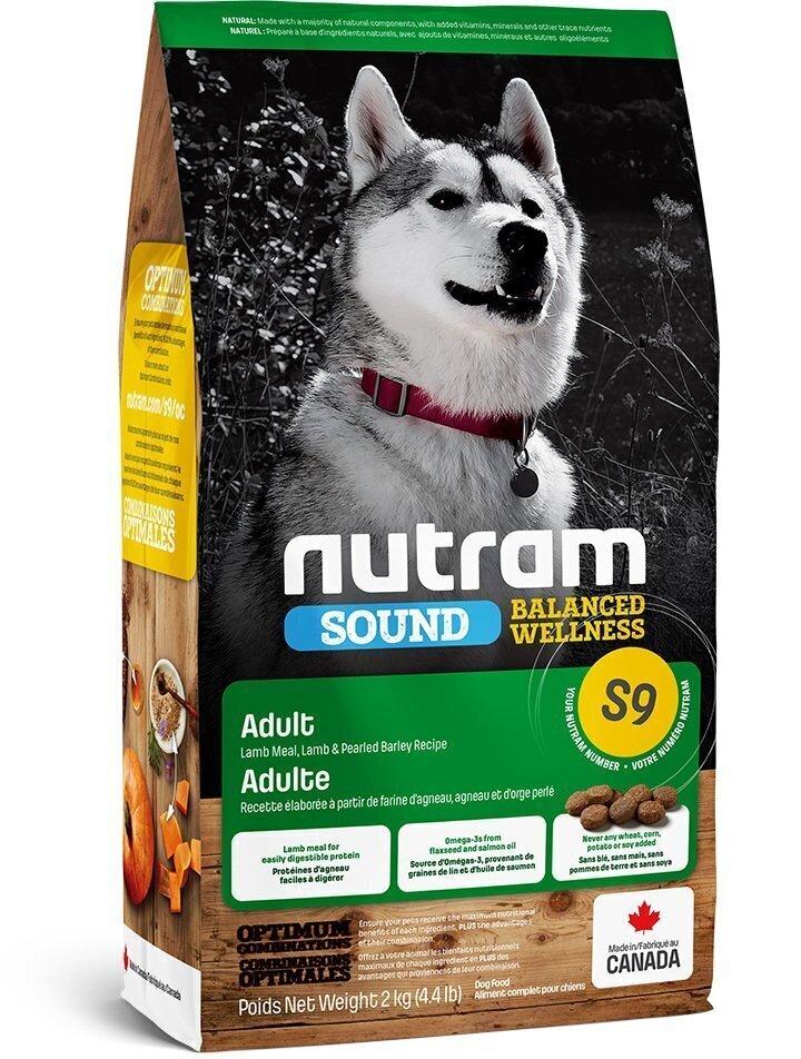 Nutram корм для взрослых собак всех пород, ягненок 2 кг