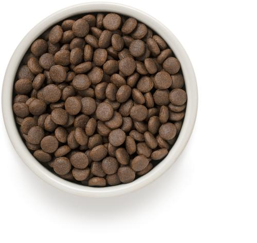 One & Only корм для взрослых собак всех пород, индейка с рисом 1 кг