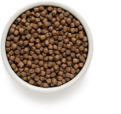 One & Only корм для взрослых собак малых пород, индейка с рисом 3 кг